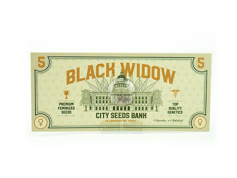 Black Widow Feminised