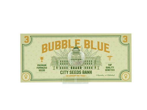 Bubble Blue Feminized