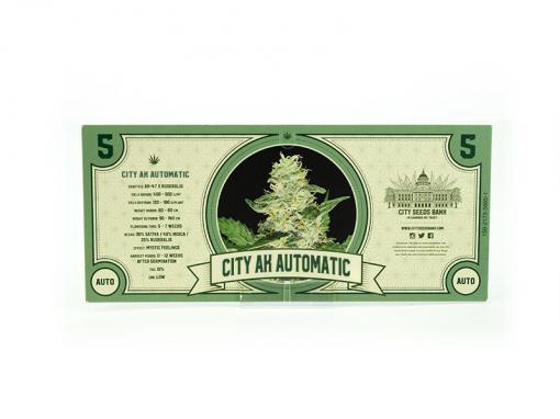 City AK Automatic