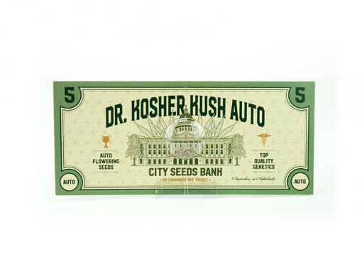 DR Kosher Kush Auto