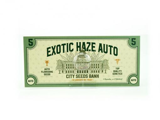 Exotic Haze Automatic Cannabis Seeds