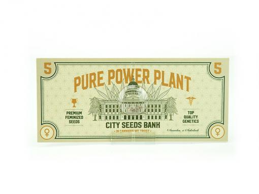Pure Power Plant Cannabis Seeds