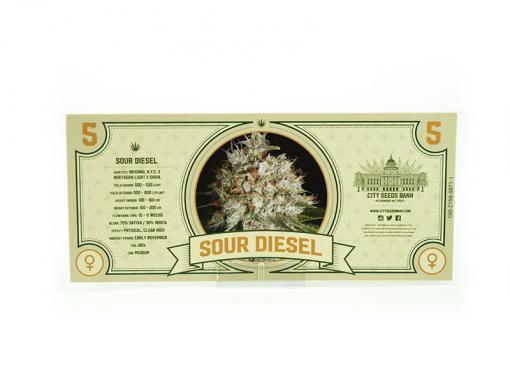 Sour Diesel Feminised