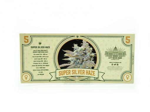 Super Silver Haze Feminised