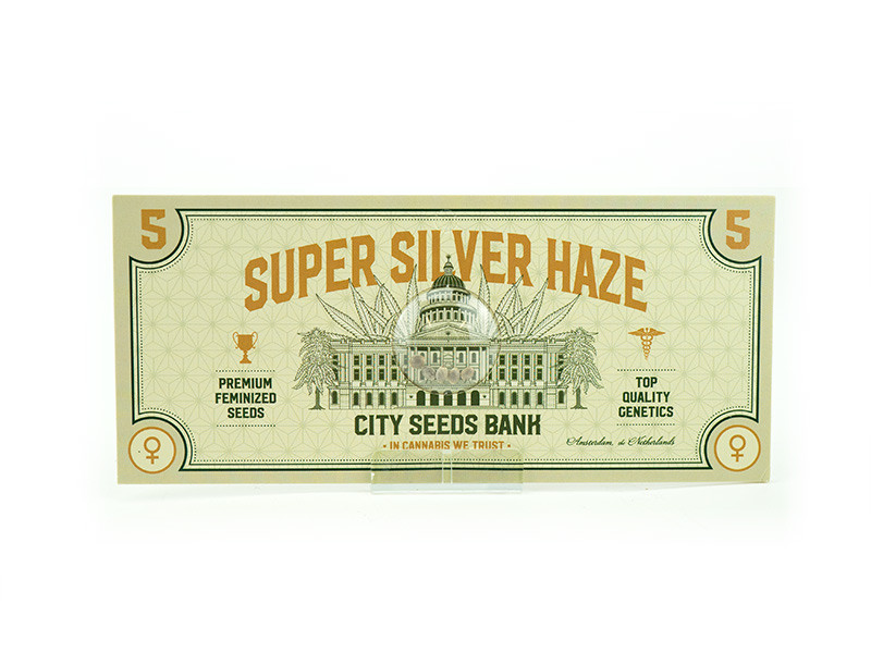 super silver haze grow guide