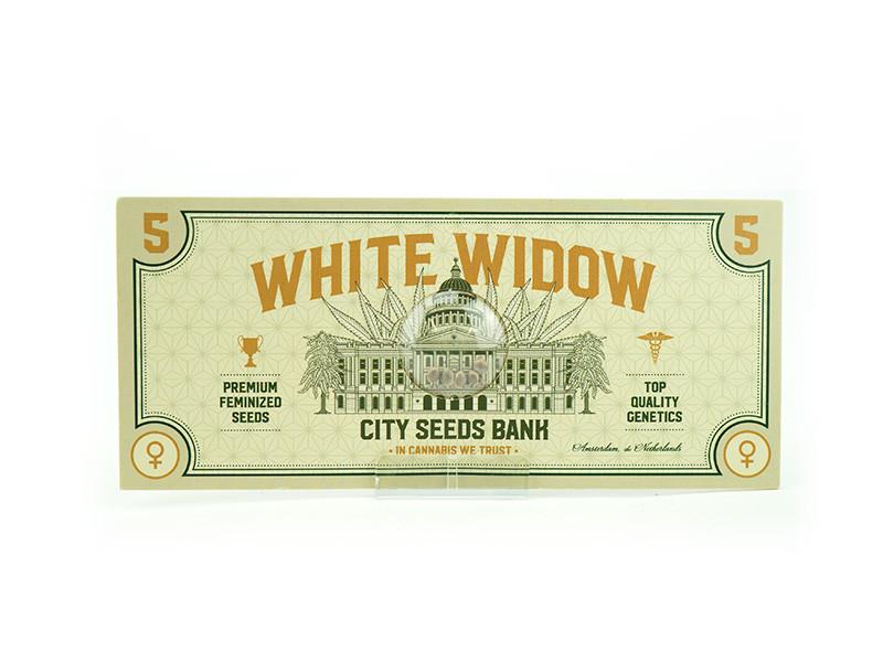 White Widow Feminised
