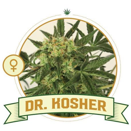 Dr Kosher