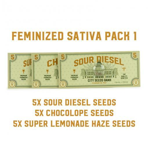 Feminized Sativa Pack 1