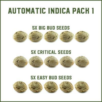 Automatic Indica Pack 1