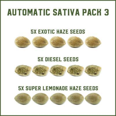 Automatic Sativa Pack 3