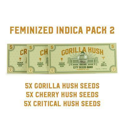 Feminized Indica Pack 2
