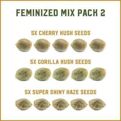 Feminized Mix Pack 2