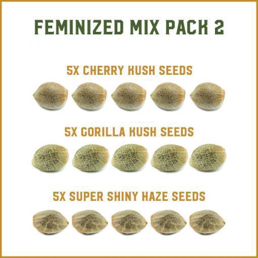 Feminized Mix Pack 2