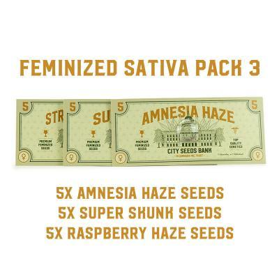 Feminized Sativa Pack 3