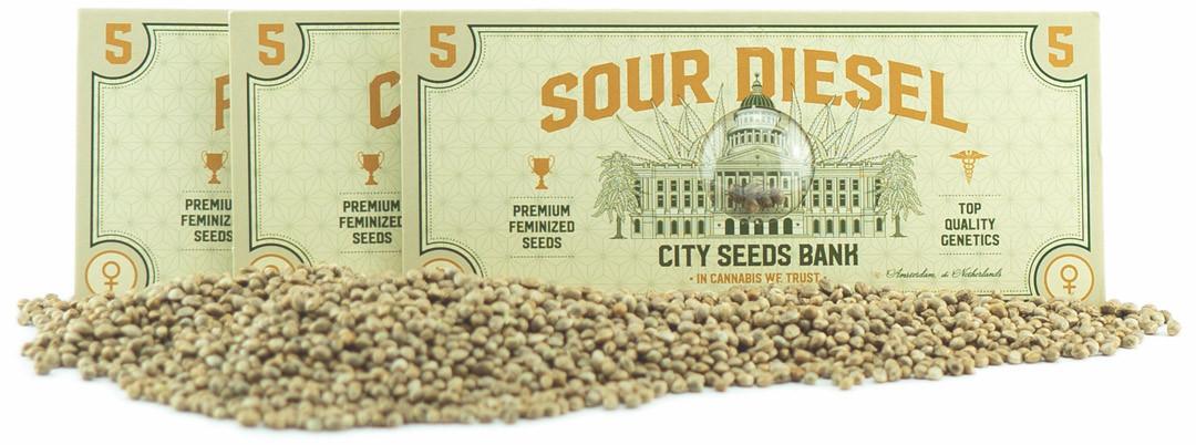 Super Seeds Packs - Cannabis Seeds