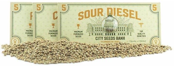 Super sedds packs - cannabis seeds