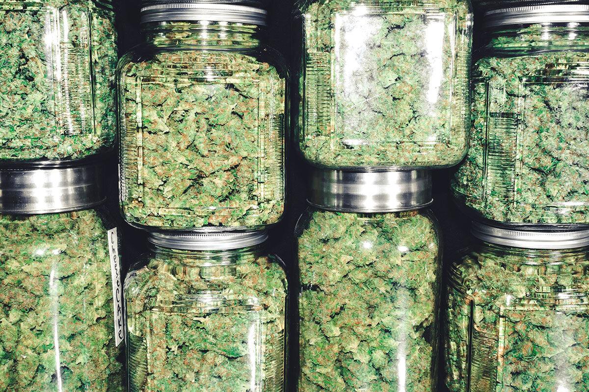 Curing Cannabis in Mason Jars